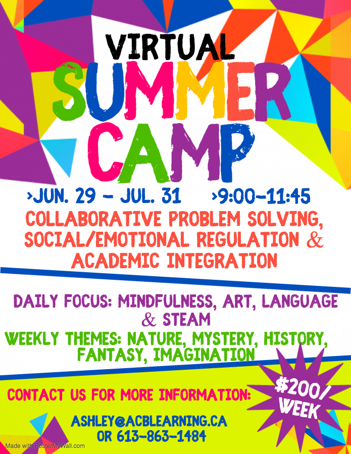 Virtual Summer Camp Flyer
